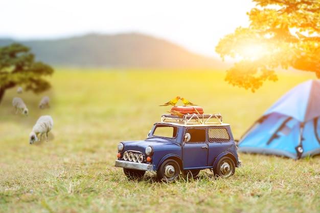 夏休みと休暇のコンセプトで旅行。森と自然公園でのキャンプとテント。