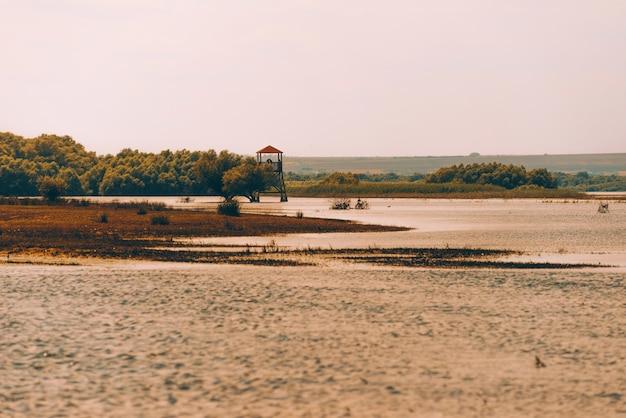 湖と森の風景の近くの夏の暑い日