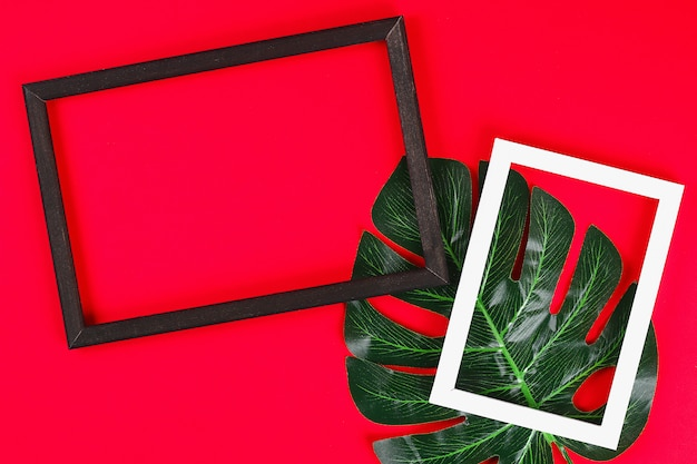 Summer ideas concept tropical leaf white black frame border on red background, top view copy space