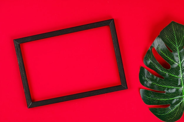 Summer ideas concept tropical leaf white black frame border on red background. top view copy space
