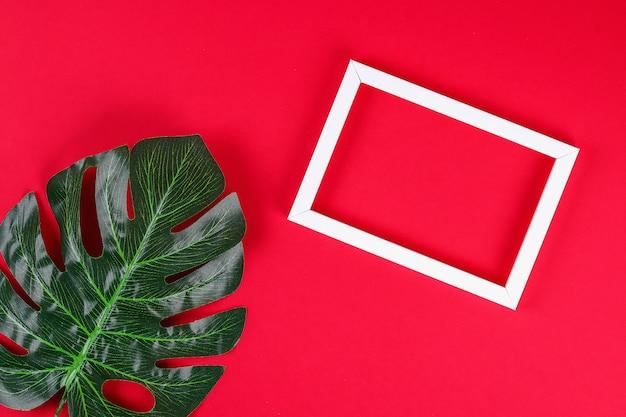 Summer ideas concept tropical leaf white black frame border on red background