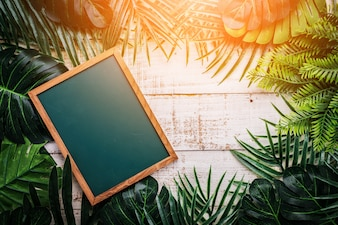 Summer ideas concept with tropical leaf frame border with chalk board on white vintage wooden background with free copy space