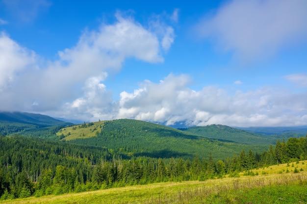 森林に覆われた山々の夏。青い空の雲。太陽は厚い草と斜面で空き地を照らします