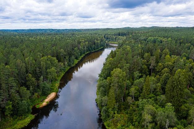 Летний пейзаж сверху с рекой гауя, которая петляет через смешанные древесные леса, национальный парк гауя, латвия