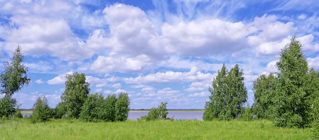 Summer landscape. green fields, trees, clouds.