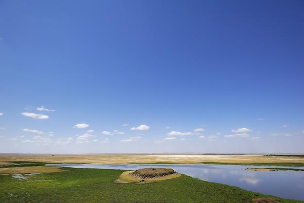 Летний пейзаж в африке
