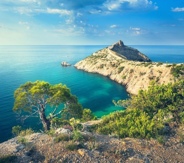 Летний пейзаж в горах на берегу моря. удивительный вид на зеленое дерево, горы, море с бирюзовой водой и красочное голубое небо на восходе солнца. путешествуйте по европе. предпосылка природы. морской пейзаж