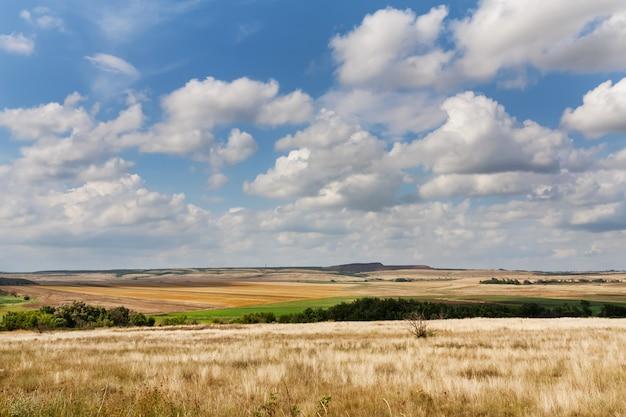 구름과 푸른 하늘 아래 마른 노란 잔디와 우크라이나 대초원의 여름 풍경