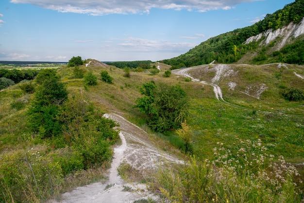 緑の牧草地と丘陵地帯の夏の風景