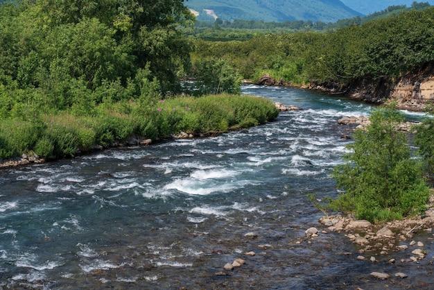 Летний пейзаж ручья чистая вода горной реки и зеленый лес на берегу реки в солнечный день