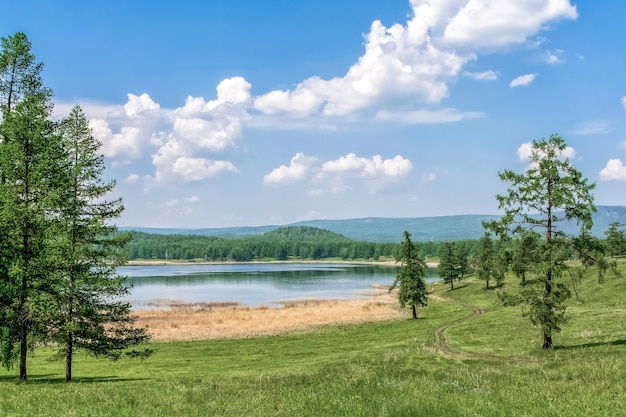 Summer landscape on a sunny day with trees and lake
