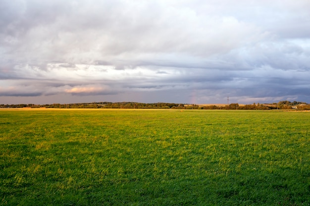 Summer landscape with a cloudy sky and green grass. sunset time