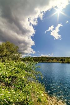 Летний пейзаж с цветами, зелеными растениями, озером с водой, темными облаками на горизонте и восходом солнца сквозь облака. атазар, мадрид,