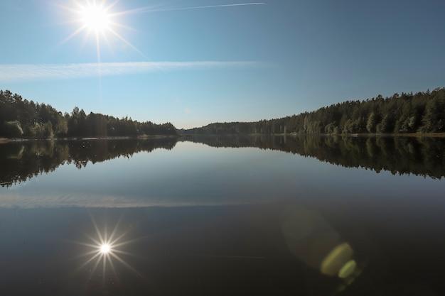 Летний пейзаж с зеленой лесной водой озера ясное небо с сияющим солнцем лучами и его отражением ...