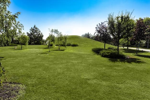 푸른 잔디와 나무로 둘러싸인 언덕이 있는 여름 풍경
