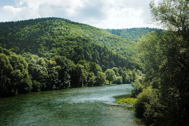 丘の間を流れる山川のある夏の風景