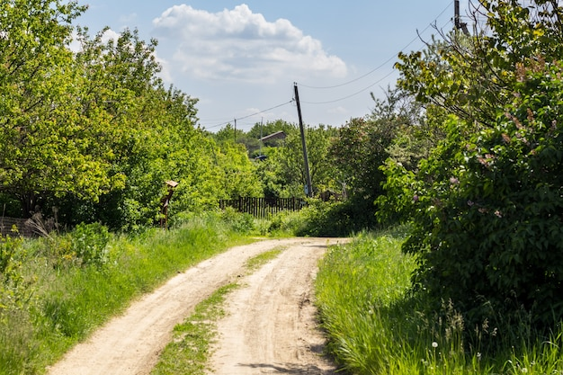 Summer landscape with road in a village in russia. sunny summer day in the countryside.