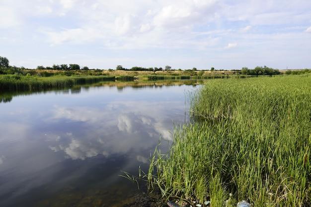 Летний пейзаж с небольшим озером в лесу сияющее солнце отражается в озере