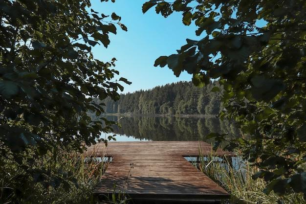 Летний пейзаж с листьями деревьев на переднем плане, лес на горизонте, озеро, чистое небо и деревянная пристань