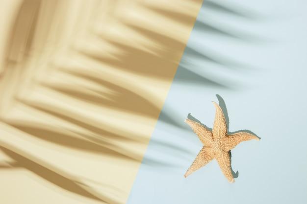 야자수 잎과 불가사리의 그림자가 있는 여름 최소한의 배경