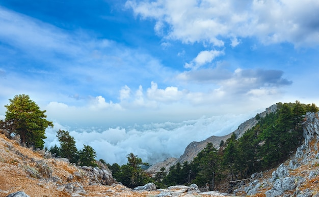 산 aenos 또는 ainos의 여름 아침 흐린 최고 볼 수 있습니다. kefalonia, 그리스.