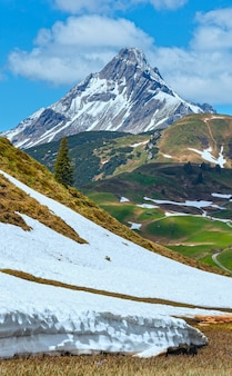 夏の山と雪解けの牧草地の眺め(ワース、フォアアールベルク、オーストリア)。