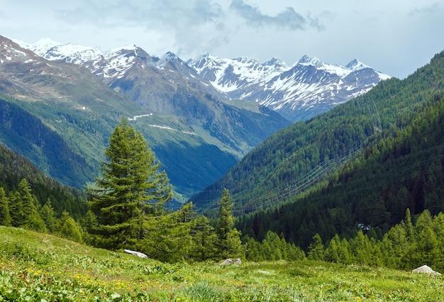 Летний горный пасмурный пейзаж со снегом на вершине горы (альпы, швейцария)
