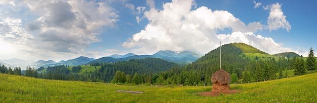 干し草のスタックと夏の山の緑の牧草地(カルパティア山脈、ウクライナ)。セブンショットステッチ画像。