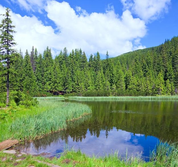 Летнее горное озеро маричейка и отражение елового леса (украина, хребет черногора, карпаты)