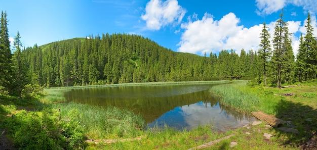 Summer mountain lake marichejka and fir forest with blue sky reflection in (ukraine, chornogora ridge, carpathian mountains). five shots stitch image.