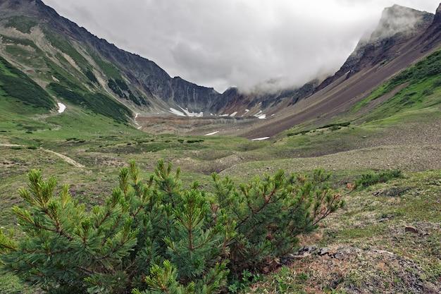 Летний горный пейзаж прекрасный вид на горный цирк со скалистыми склонами в пасмурную погоду