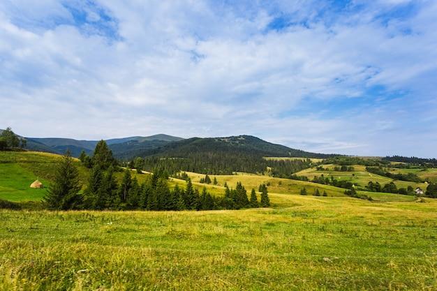Летний горный пейзаж карпаты. солнечный полдень.