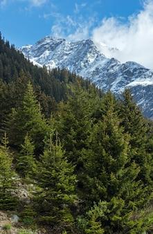 사면에 전나무 숲과 여름 산 풍경 (silvretta 알프스, 오스트리아)