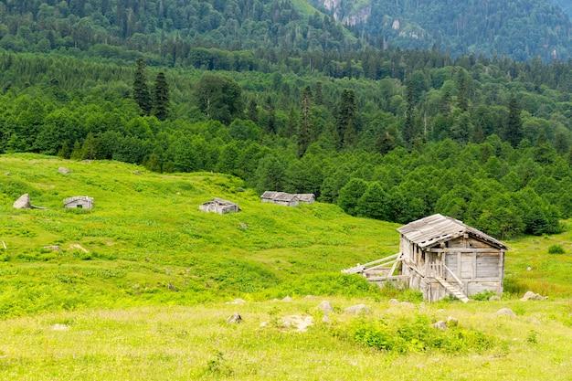 ゴルギット、アルトヴィン、トルコと夏の山高原高原