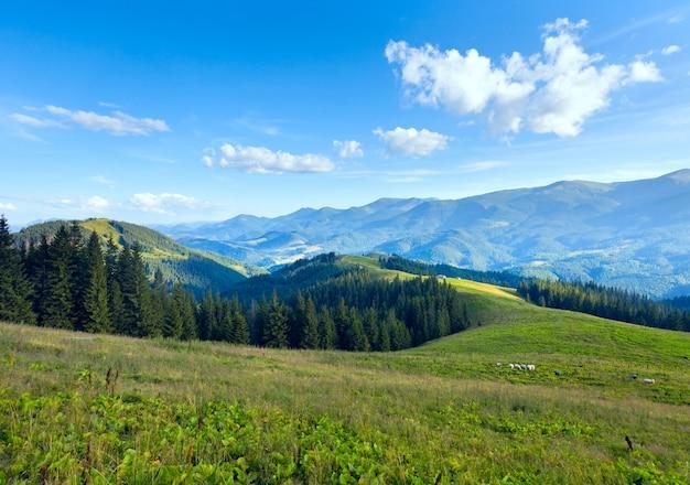 丘の上に汚れた道路と夏の山の高原の風景