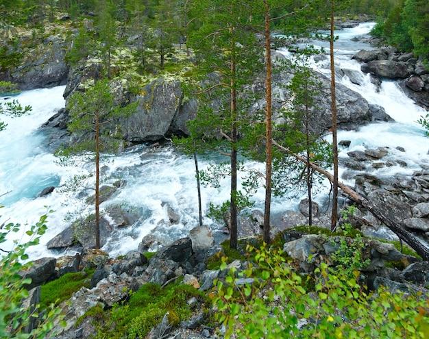 여름 산 강 폭포보기