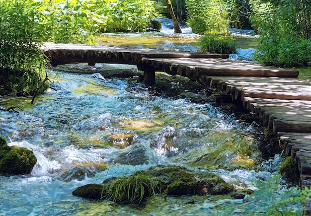 플리트 비체 호수 국립 공원 (크로아티아)의 개울을 가로 지르는 판자 보도가있는 여름 산 돌진 강 전망