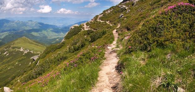 Летний вид на горы и тропа поднимаются вверх