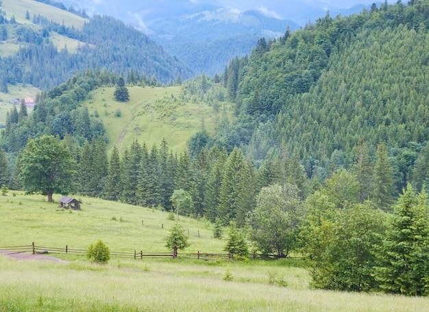 緑の牧草地に木造の小屋と夏の山の景色