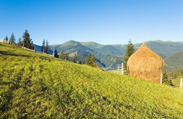 フィールドと干し草の山と夏の山の村の郊外