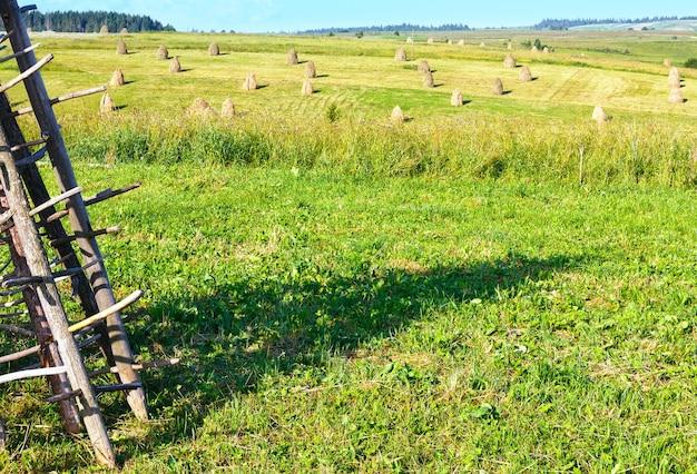 干し草の山が畑にある夏の山間の村の郊外(カルパティア山脈、ウクライナ)