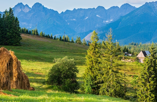 Summer mountain village outskirts with haystacks and tatra range behind (poland)