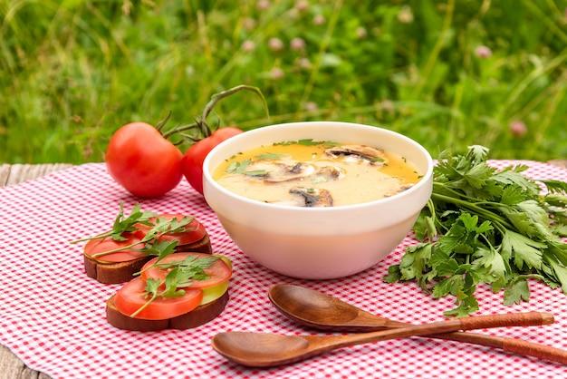 Летний грибной суп с петрушкой, гренками, помидорами на красной клетчатой салфетке на свежем воздухе.