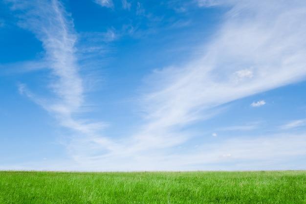 Летняя природа. голубое небо с белыми облаками