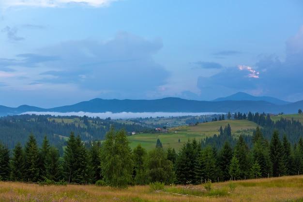 Летний природный пейзаж карпатских гор