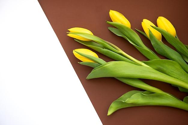夏または春のカラフルな背景フラットは黄色いチューリップの花と横たわっていた