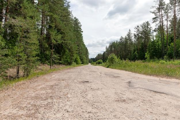 녹색 식물이있는 여름 또는 봄 풍경과 수리가 필요한 도로