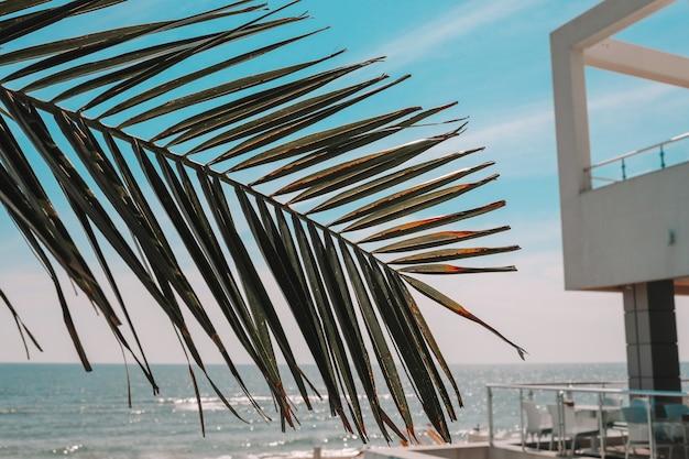 여름 야외 수영장과 일광욕용 긴 의자. 호텔에서 휴식.