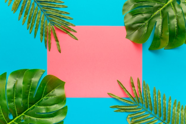 Summer palm tree leaves composition