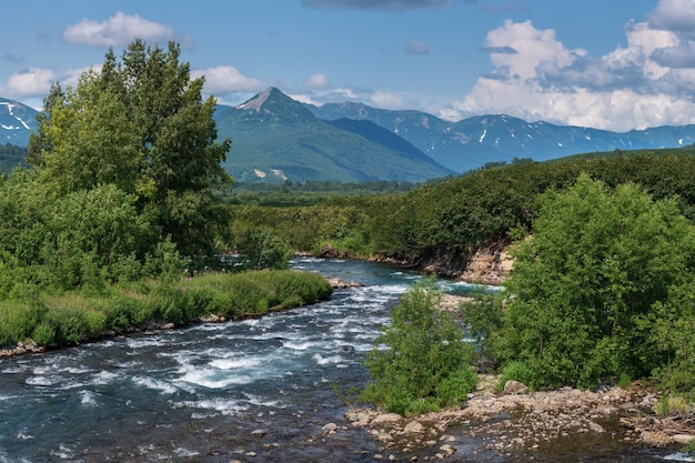 강둑을 따라 언덕에 산 강 녹색 숲의 스트림 물 여름 파노라마 풍경